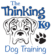 The Thinking K9 Logo